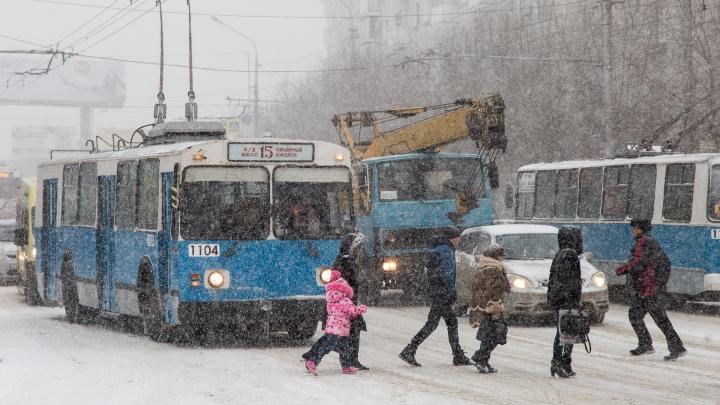 Ждали снега? Получите дождь: Волгоградская область начнет новый год с очередной оттепели