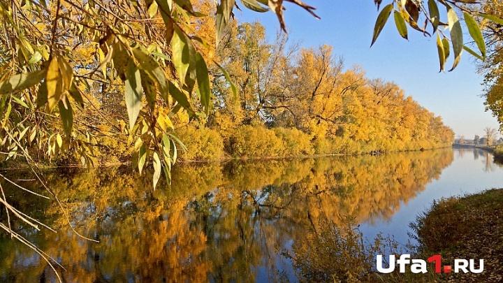 Бизнесмен в Башкирии брал плату за отдых у озера