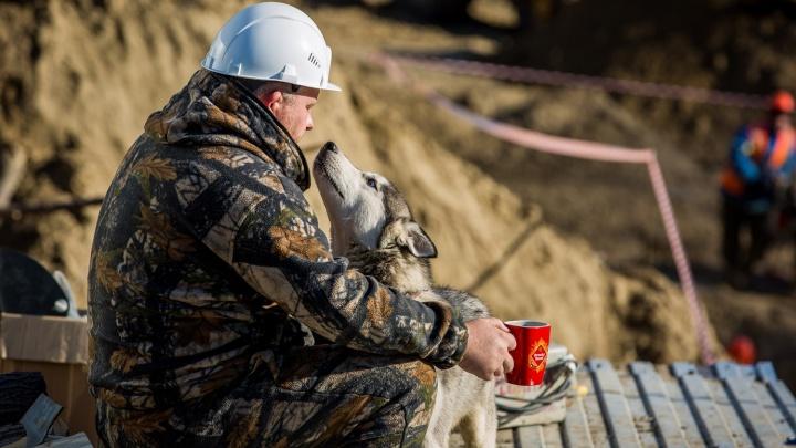 Больше полутора тысяч новосибирцев остались без зарплаты