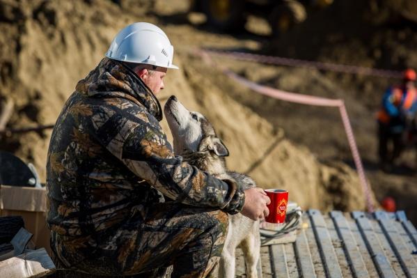 Без денег остались более 1,6 тысячи новосибирцев
