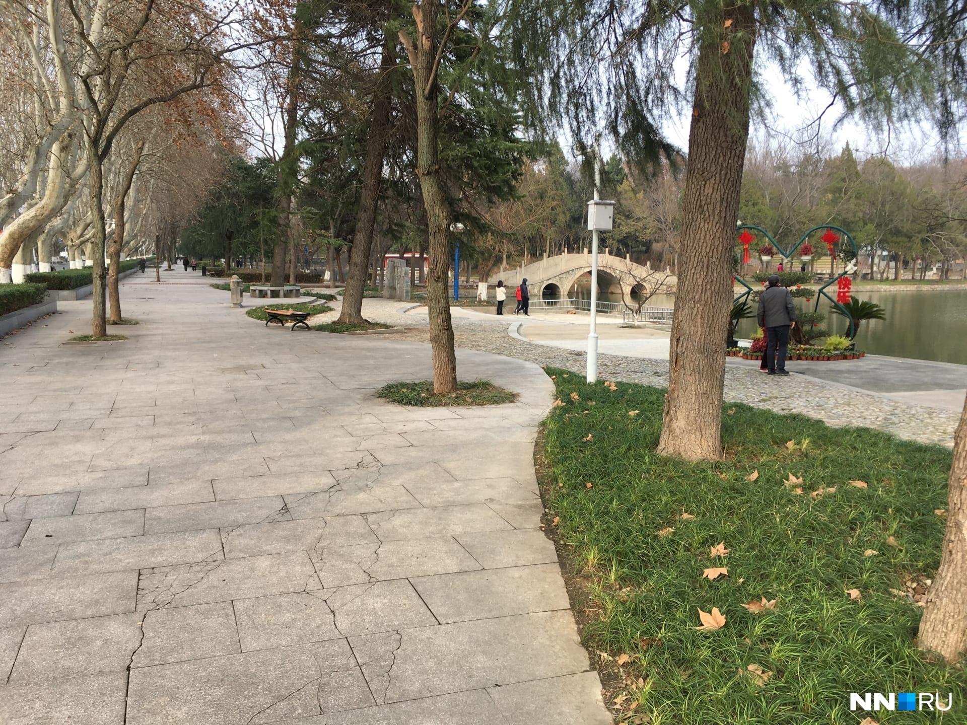 Так выглядит территория университетского парка