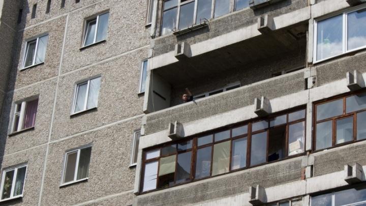 В Екатеринбурге живодеру,выбросившему соседскую таксу с балкона, дали 180 часов обязательных работ
