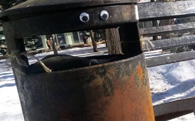 «Родители будут мною гордиться»: мусорная урна в центре Волгограда завела свой инстаграм