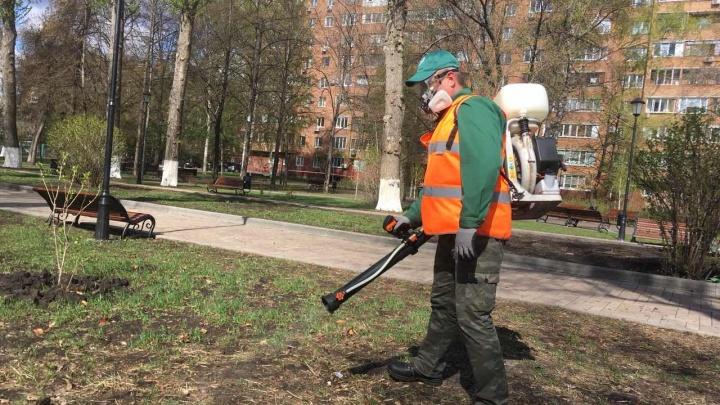 В Самаре парки и скверы начали обрабатывать от клещей