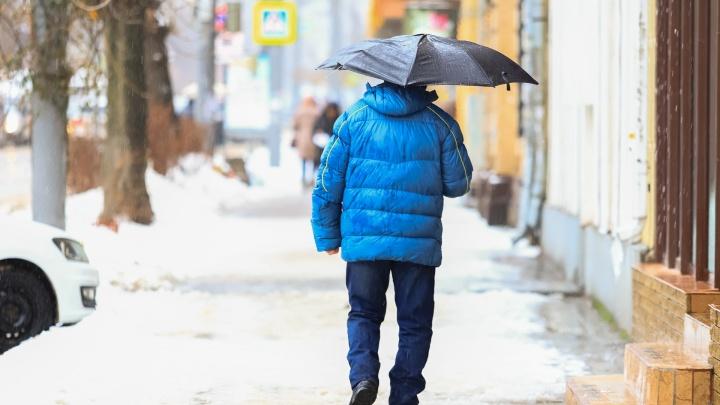 Дождь и мокрый снег: в Ростове ожидается резкое ухудшение погоды
