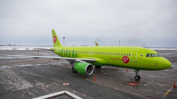 Виновник найден: прокуратура назначила штраф за возвращение самолёта Новосибирск — Москва в Толмачёво