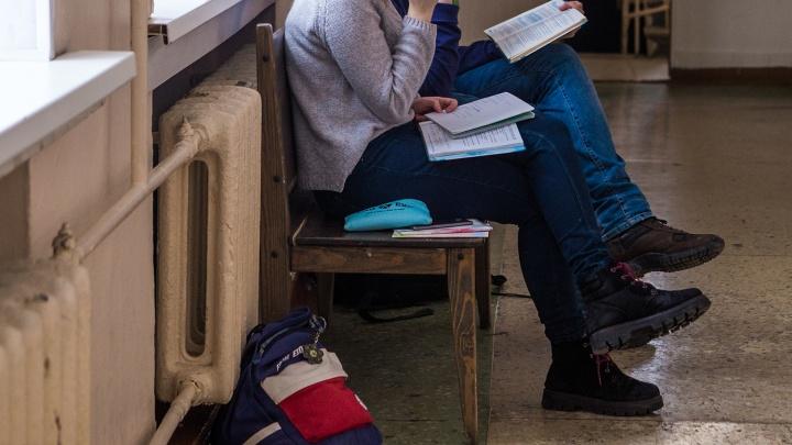 Прокуратура проверит школу, из которой выгнали ученицу с голубыми волосами