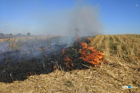 Очевидцы высказывают две версии произошедшего. Либо загорелась трава от жары, либо что-то взорвалось