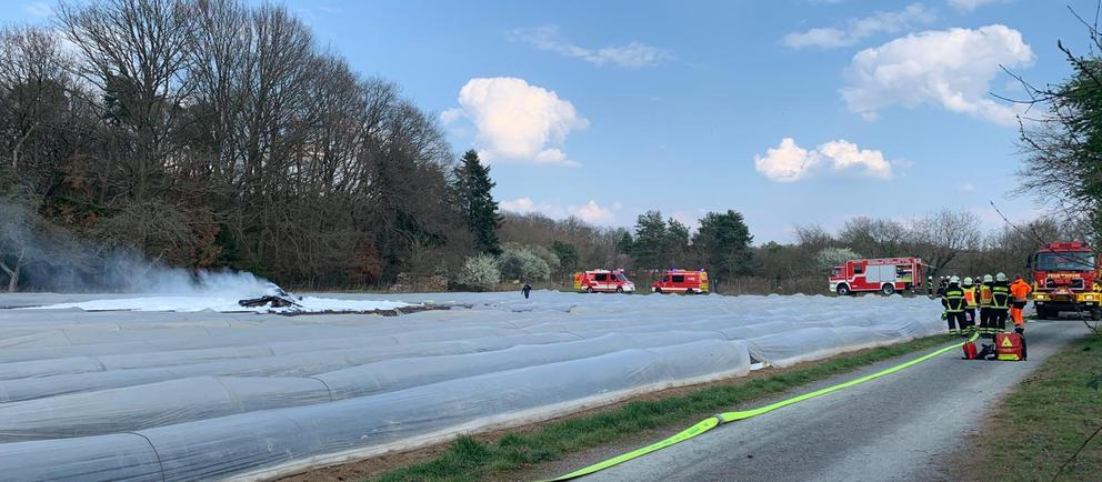 Самолет Наталии Филёвой разбился при заходе на посадку неподалеку от Франкфурта-на-Майне.