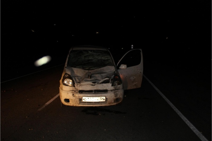 Авария случилась из-за того, что бык начал резко перебегать дорогу