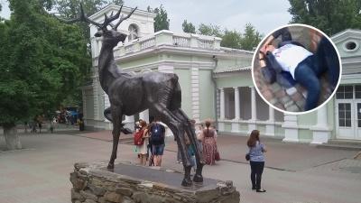 Вступился за лису и был избит: в ростовском зоопарке подрались посетители