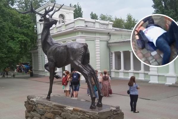 В зоопарке ударили по лицу посетителя
