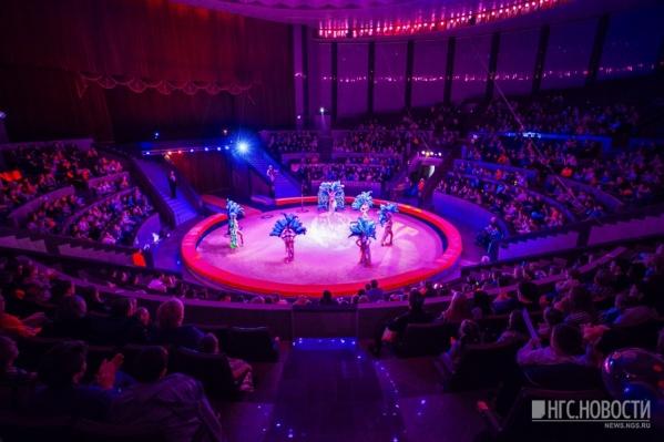 Новосибирский цирк сам будет готовить актёров
