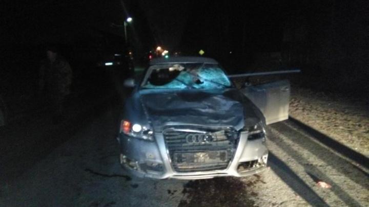 В Прикамье будут судить водителя Audi, сбившего насмерть трех человек