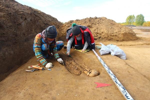 Масштабные раскопки впервые проводились на территории Енисейска