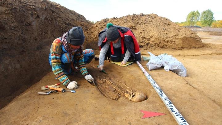 Археологи воссоздают облик первых жителей Енисейска