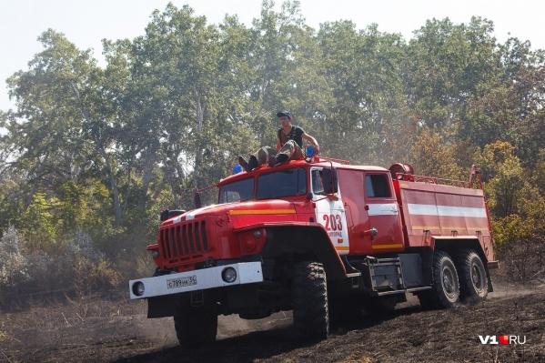Лесные пожары происходят в большинстве случаев из-за небрежности людей