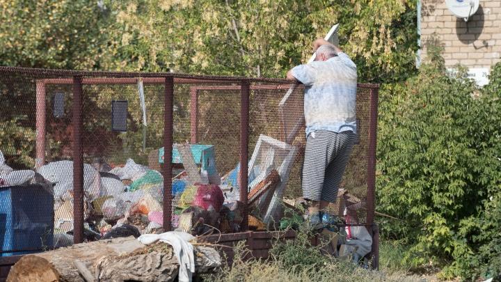 Золотой мусор: дворы Волгограда превратились в свалки из-за чрезмерных аппетитов мусорщиков