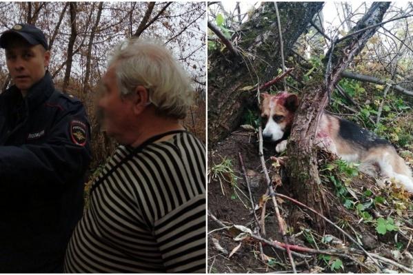 По словам очевидцев, мужчина издевался над двумя собаками