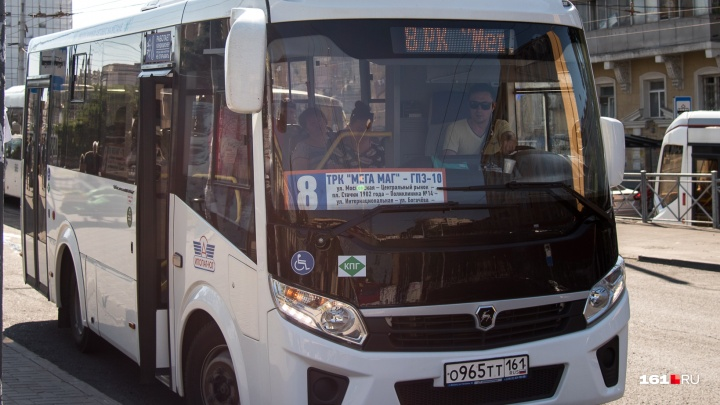 Власти Ростова планируют продлить до Каратаево два маршрута