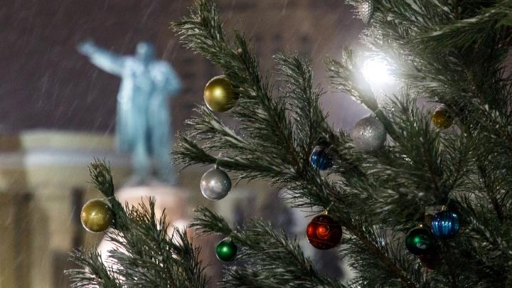 Волгоградцы встретят старый Новой год с метелью и сильным ветром при-8 ºС