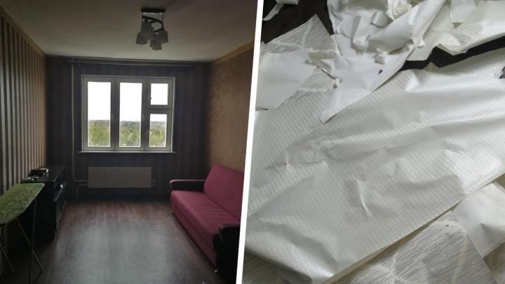 Содрали даже обои: многодетная семья сбежала из съемной квартиры, забрав мебель и технику хозяев