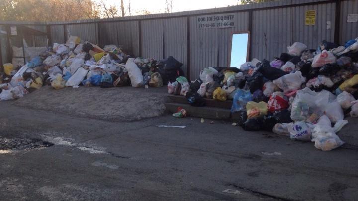 «Только начали радоваться»: Челябинск накрыла вторая волна мусорного коллапса