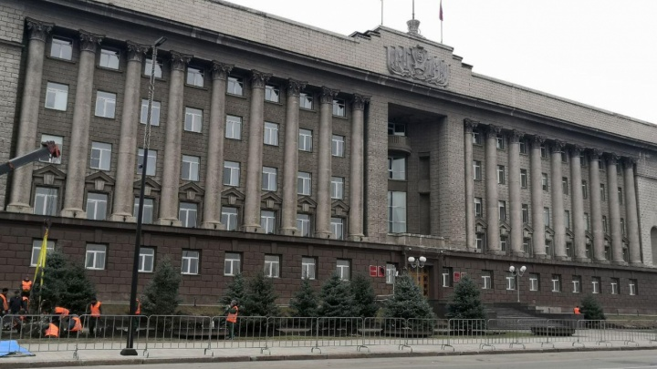 На уход за деревьями в Красноярске выделили 10,5 млн рублей