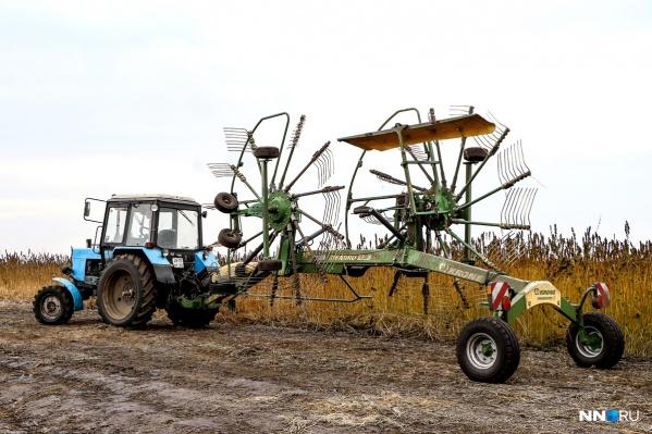 Производство конопли в Нижегородской области будет расширяться<br>