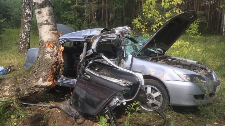 «Пассажир погиб мгновенно»: в Ярославле иномарка врезалась в берёзу