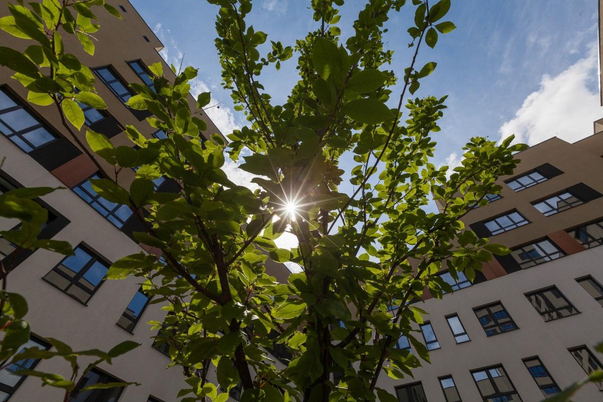 Город обновляется: какими домами начали застраивать территорию в районе улиц Шаумяна — Московской
