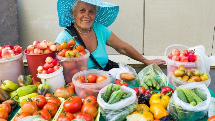 Дачников рассадят: мэрия поставит в Новосибирске сотню лотков с урожаем