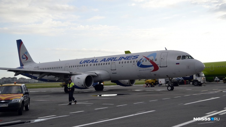 В Омске задержали вылет рейса из-за попавших в двигатель самолёта куропаток