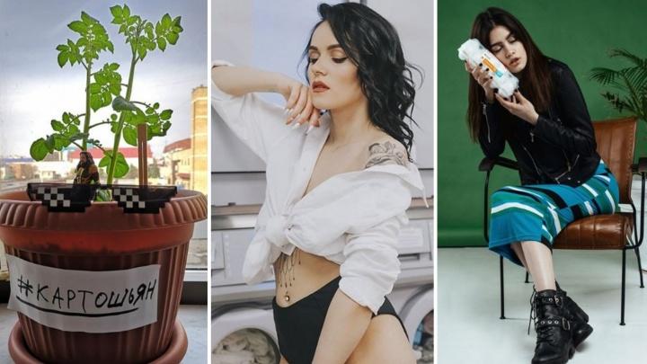 Картошка в офисе и горячие девушки с куриными яйцами: самые сумасшедшие Instagram тюменских компаний