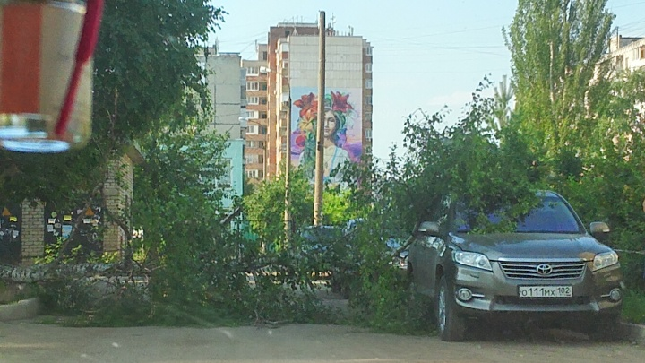 В Уфе иномарку Toyota придавило дерево