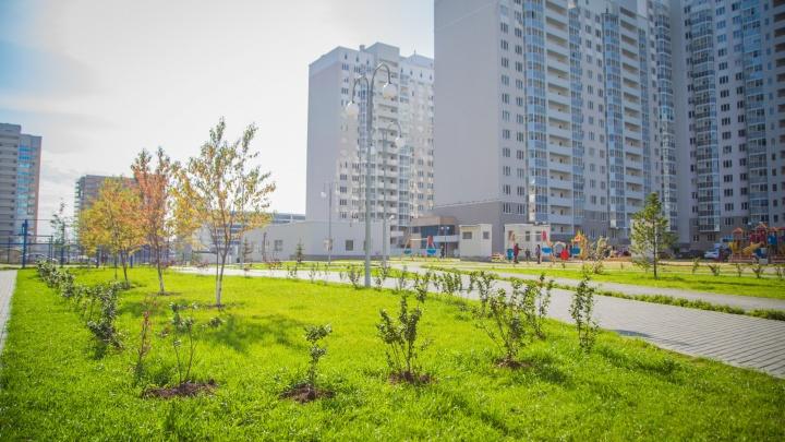 Сэкономить полмиллиона: застройщик объявил акцию на готовые квартиры в центре города