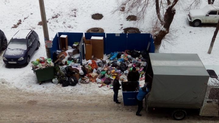 С новой концессией: Волгоград с Нового года зарос невывезенным мусором