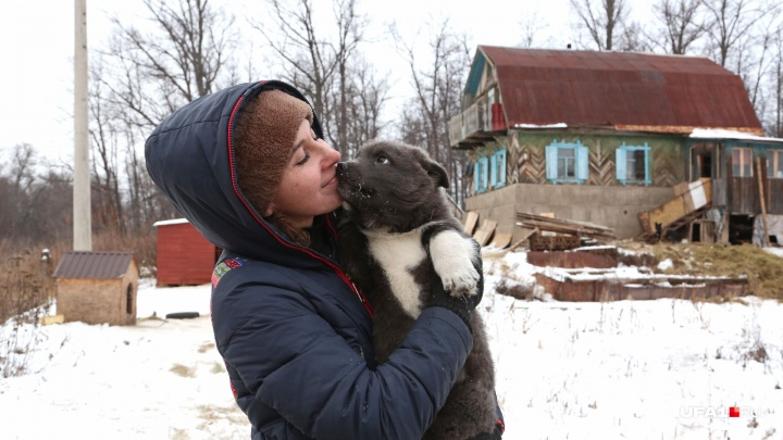«Живем, как изгои»: уфимка бросила гламурную жизнь и ютится в старом доме с 60 собаками