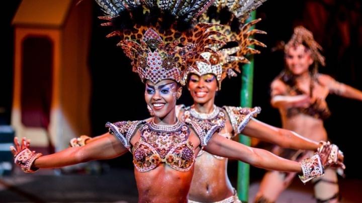 Цирк Никулина, новые спектаклии яркие выставки:премьеры недели в Перми