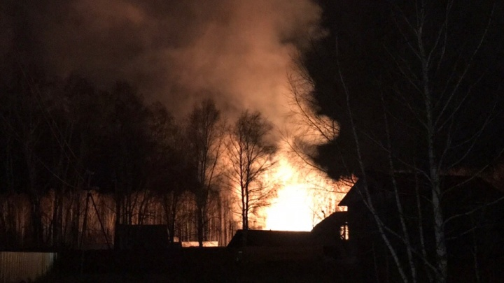 Ночью под Тюменью сгорела частная конюшня, в огне погибли 10 лошадей
