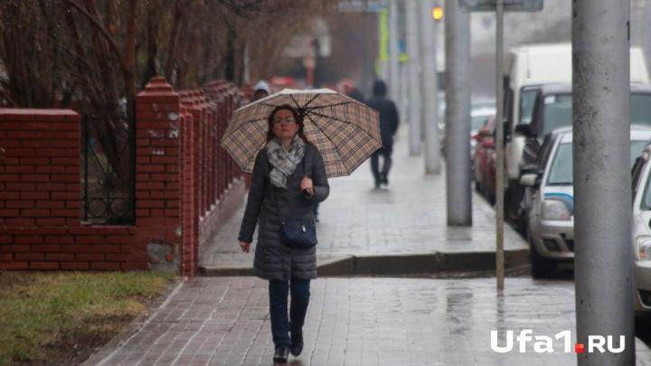 Погода в Башкирии 28 мая: грозы и дожди