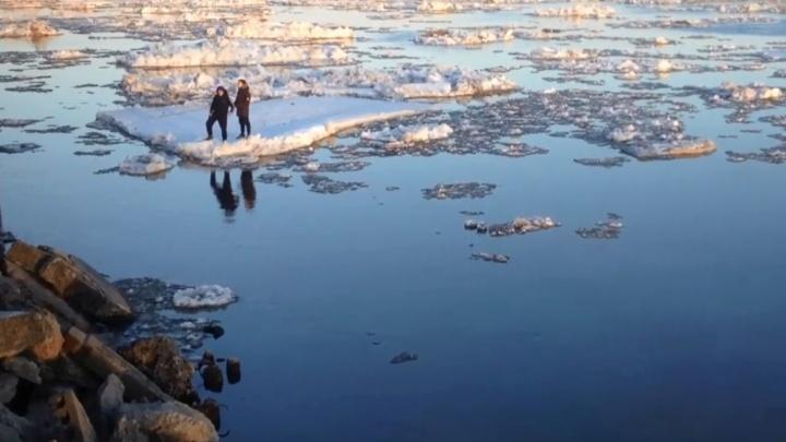 Спасатели сняли со льдины двоих молодых архангелогородцев