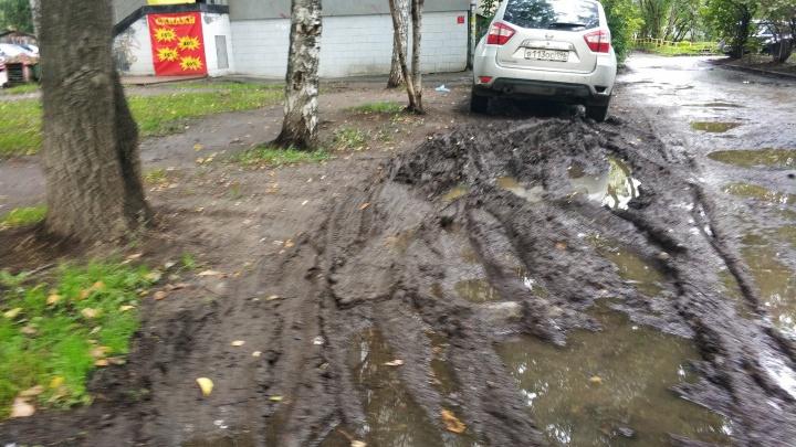 «Я паркуюсь как...»: золотая осень в компании екатеринбургских гряземесов