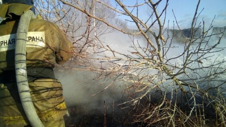 На дороге под Новосибирском загорелся торф: на месте работает МЧС