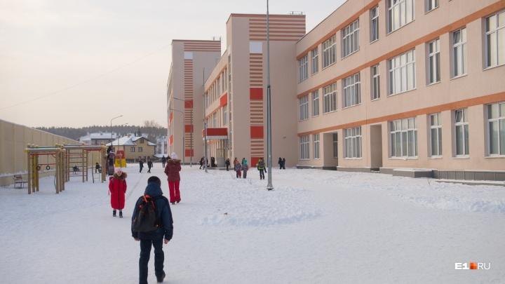 Директор «путинской» школы, где отравились 73 ребенка, написала заявление на увольнение