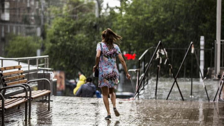 Синоптики предупредили о сырой и ветреной погоде на выходных
