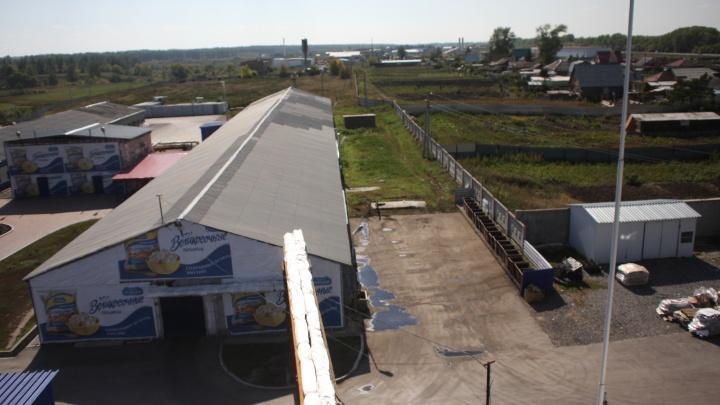 На завод под Новосибирском пришли следователи