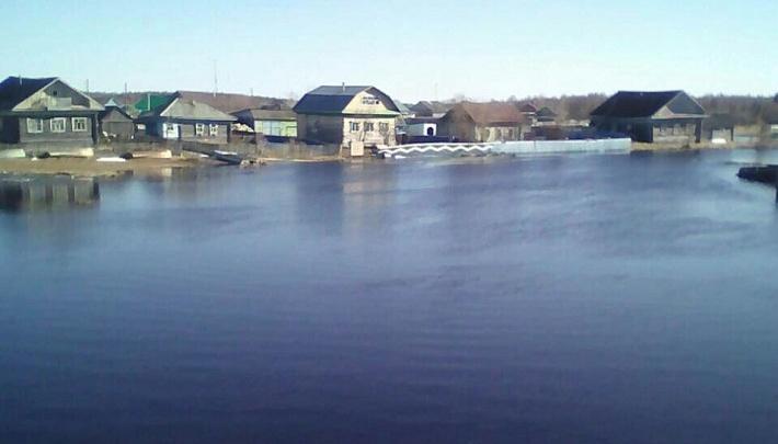 Из-за случаев заражения гаффской болезнью в Заболотье власти запретили использовать озеро