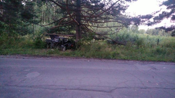 Врезались в дерево: три подростка оказались в больнице после ночной аварии