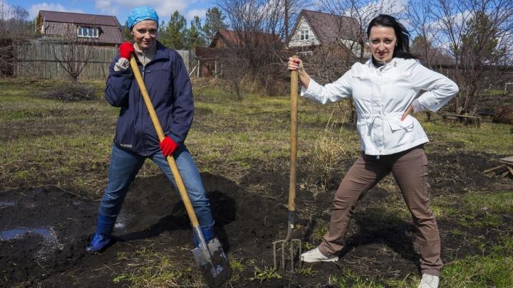 Уроки агрофитнеса от E1.RU: как вскопать огород, постройнеть и не загнуться